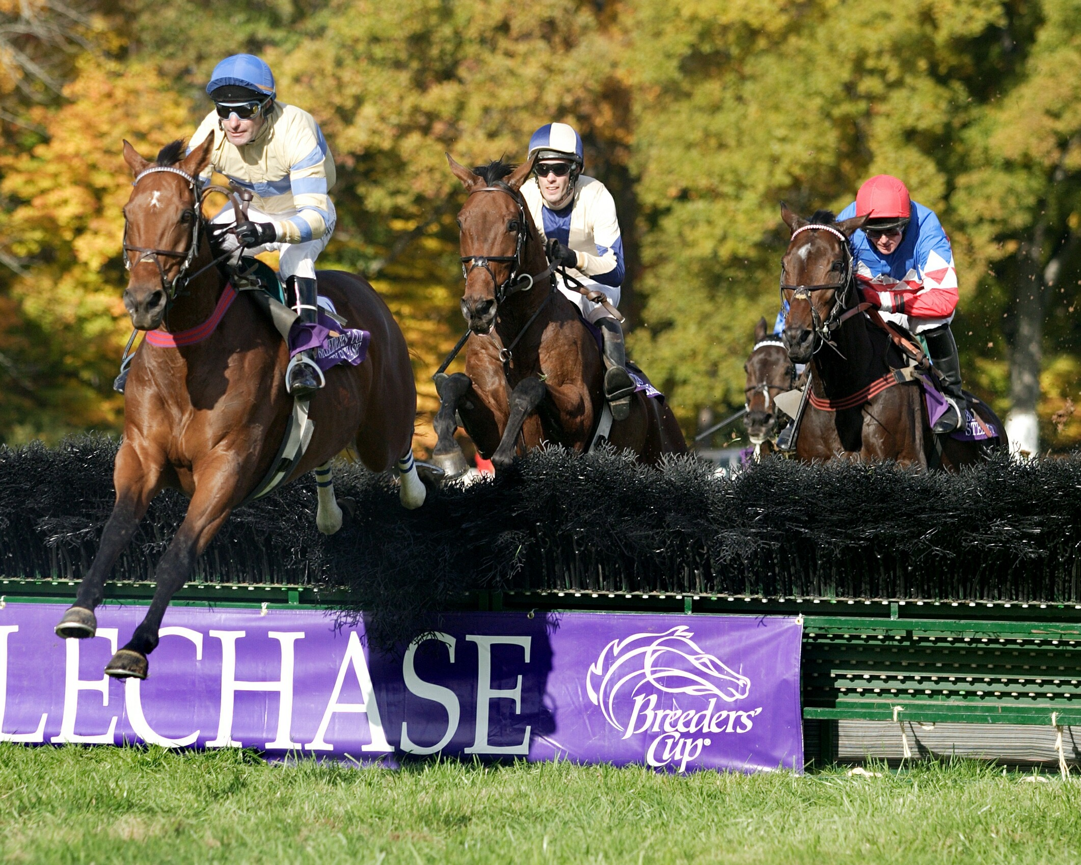 McDynamo (Craig Thornton up) leading Sur La Tete over a jump in the 2004 Breeders' Cup Grand National Steeplechase at Far Hills (Tod Marks)