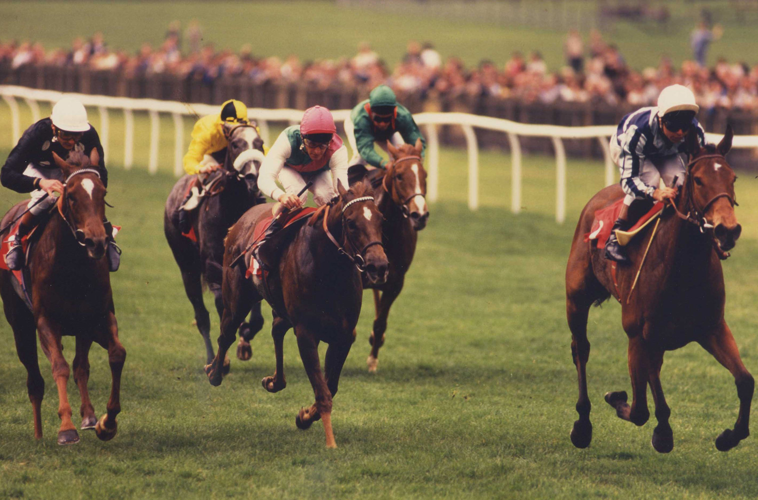 Miesque (Freddy Head up) winning the 1987 One Thousand Guineas Stakes at Newmarket (Trevor Jones/Museum Collection)