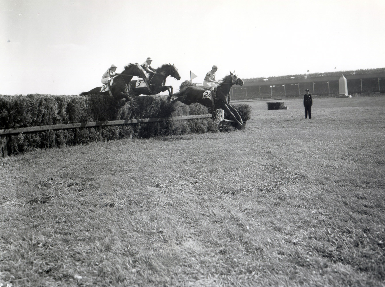 Neji (Frank Dooley Adams up) clearing a jump in the Broad Hollow Steeplechase at Belmont Park (Keeneland Library Morgan Collection/Museum Collection)