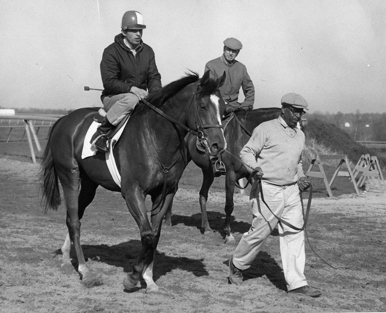 Northern Dancer in training with Hall of Fame trainer Horatio Luro on the pony nearby, April 1964 (Museum Collection)