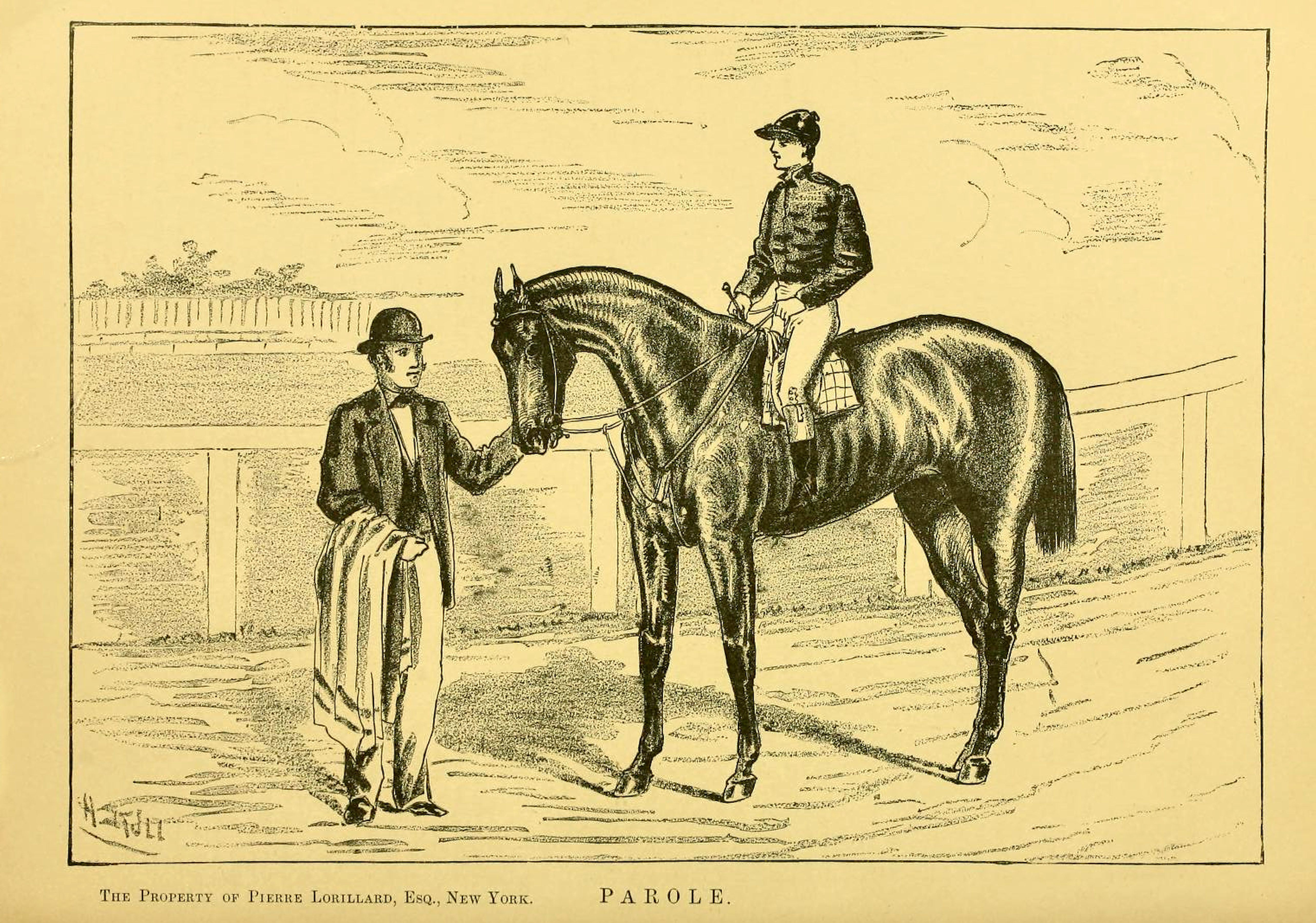 """Illustration of Parole from """"Famous American Racehorses,"""" 1877 (Museum Collection)"""