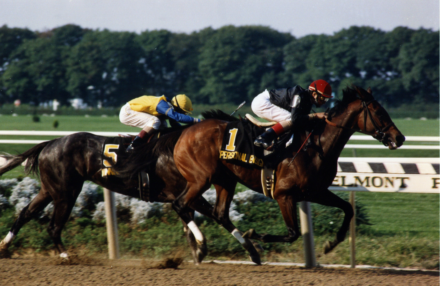 Personal Ensign (Randy Romero) defeating Winning Colors in the 1988 Maskette (Barbara D. Livingston/Museum Collection)