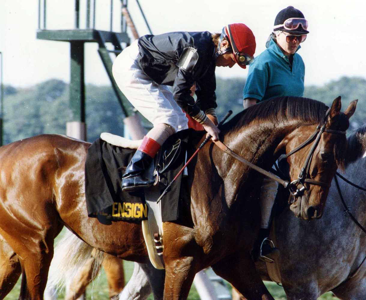Personal Ensign (Randy Romero up) at Belmont Park for the 1988 Maskette (Barbara D. Livingston/Museum Collection)
