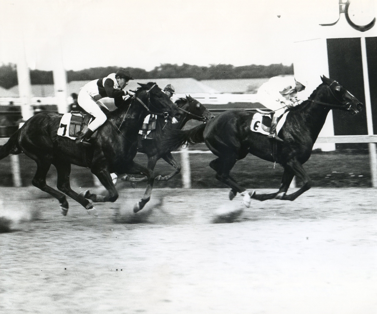 Peter Pan (J. Mountain up) winning the 1907 Standard Stakes (Keeneland Library Cook Collection/Museum Collection)