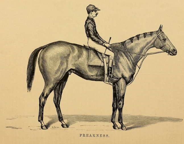 "A likeness of Preakness with an unidentified rider from ""Famous American Horses"" (Keeneland Library Collection)"