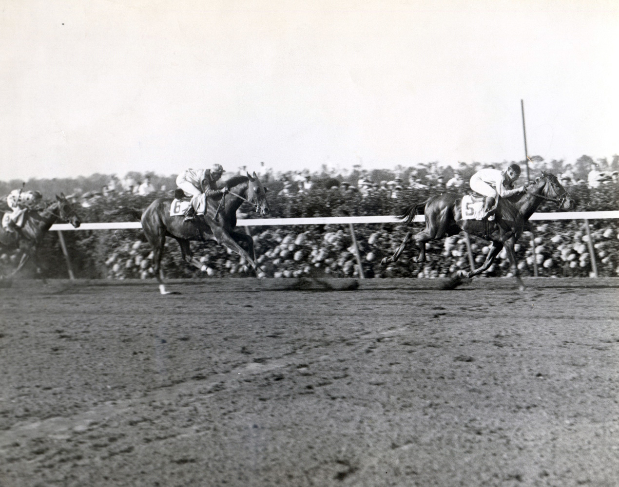 Reigh Count (Chick Lang up) winning the 1928 Lawrence Realization at Belmont Park (Fotograms/Museum Collection)