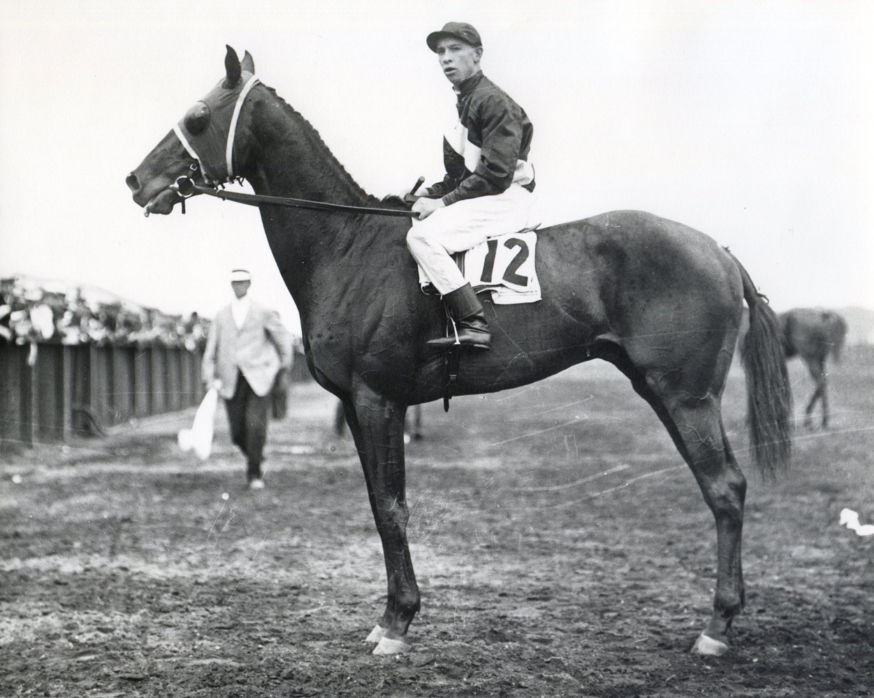 Roamer with M. Buxton up at Aqueduct (Museum Collection)