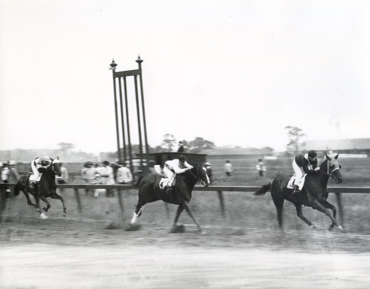 Roamer (M. Buxton up) winning the 1914 Carter Handicap at Aqueduct (Museum Collection)