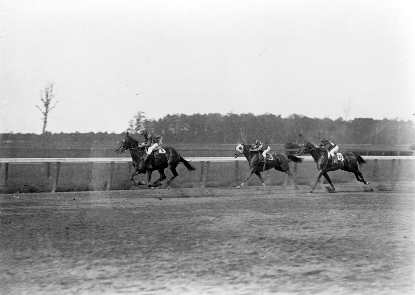 Roseben (J. McIntyre up) winning a race at Belmont Park in May 1909, his final career win (Keeneland Library Cook Collection/Museum Collection)