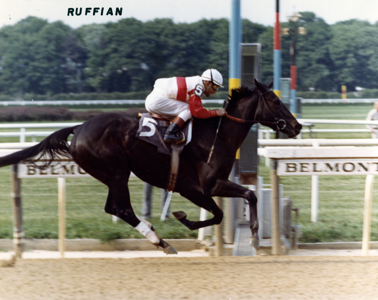Ruffian (Jacinto Vasquez up) winning the 1975 Coaching Club American Oaks at Belmont Park (NYRA/Museum Collection)