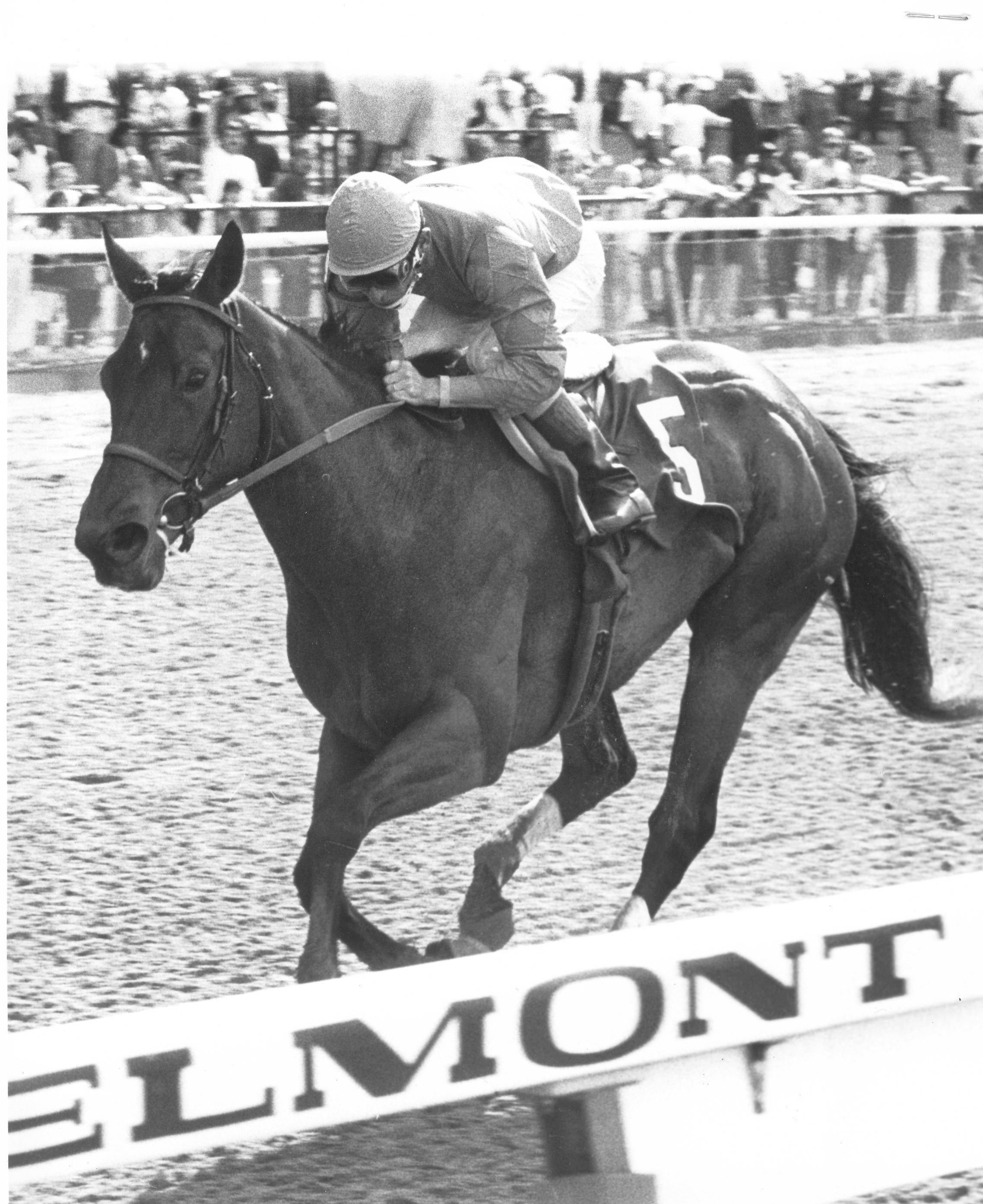Safely Kept racing at Belmont Park (NYRA)