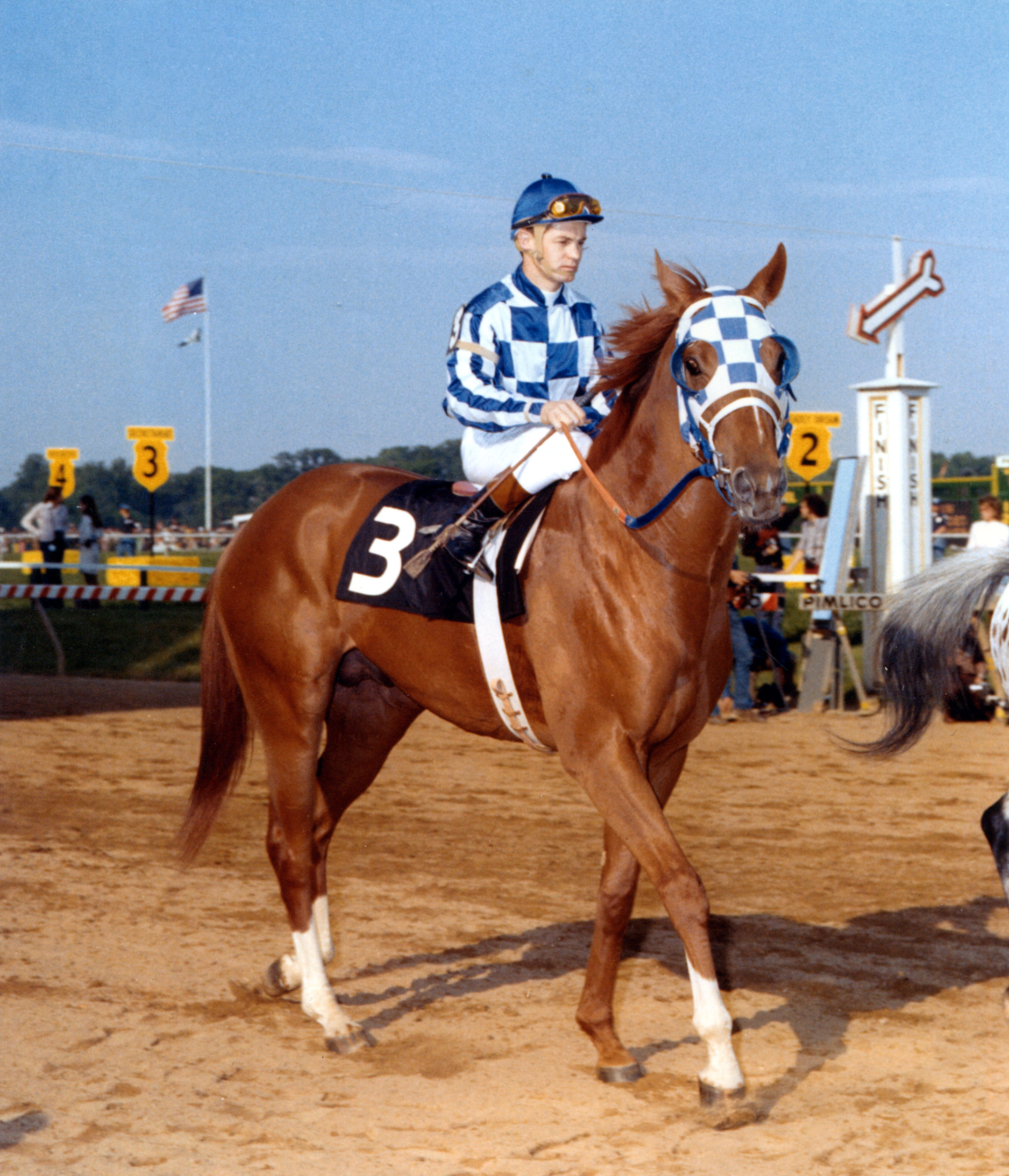 Secretariat (Ron Turcotte up) during the post parade for the 1973 Preakness Stakes (Museum Collection)