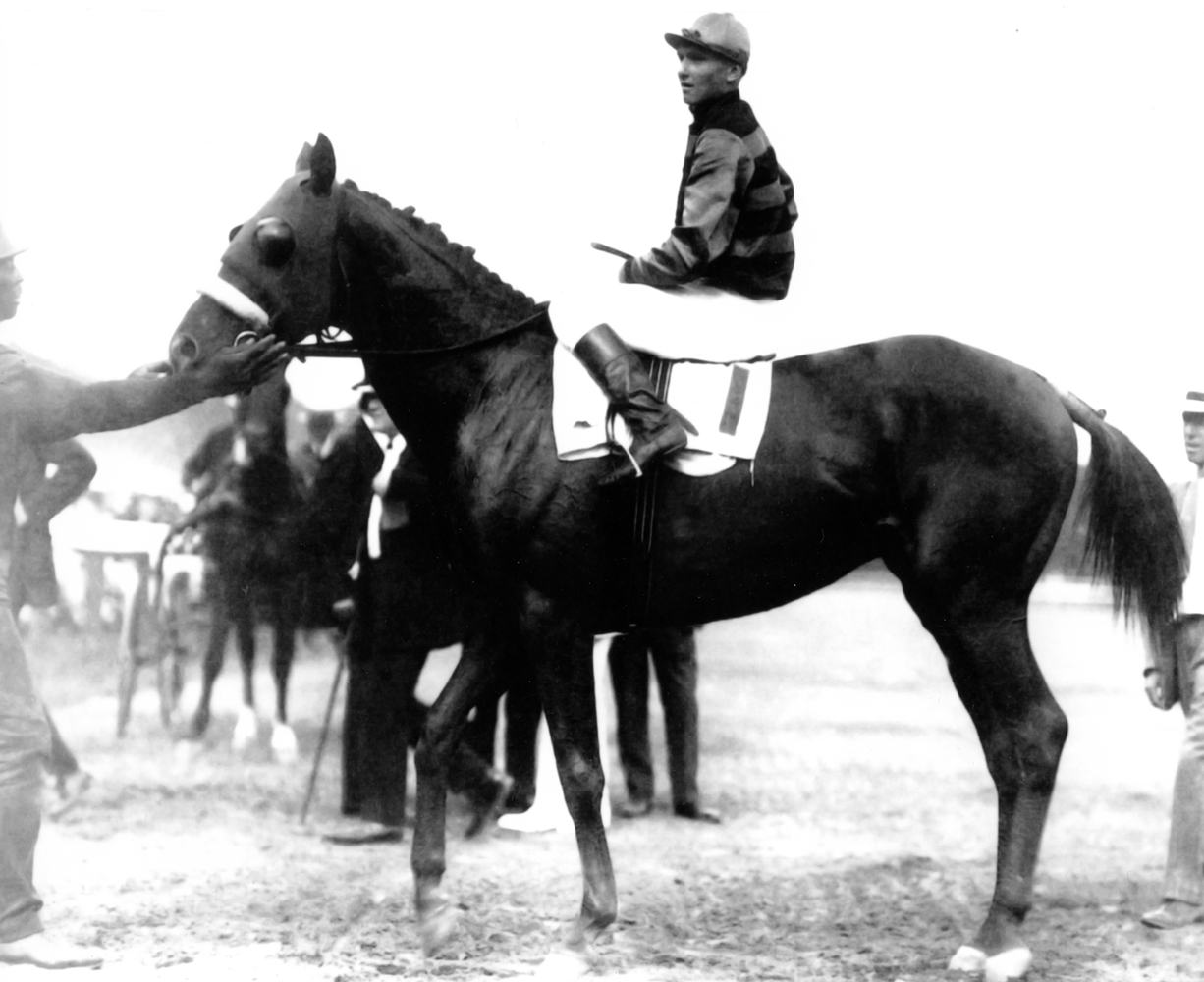 Sir Barton with Earl Sande up (Courtesy of Ken Grayson)