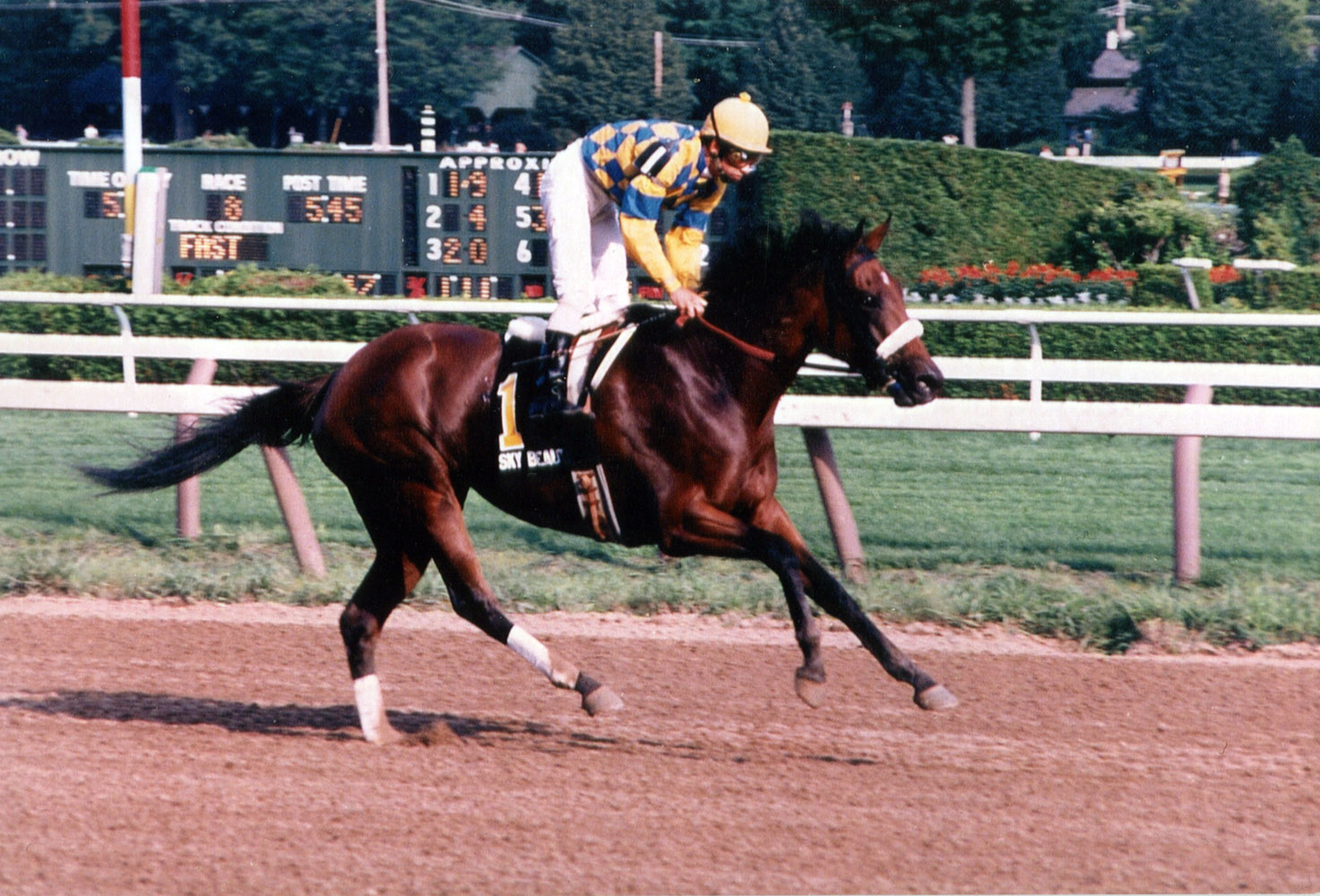Sky Beauty (Mike Smith up) winning the 1993 Alabama at Saratoga (Mike Pender/Museum Collection)