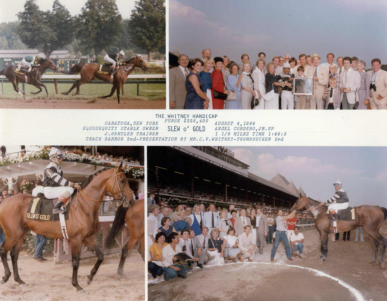 Win composite photograph for the 1984 Whitney Handicap at Saratoga, won by Slew o' Gold with Angel Cordero up (NYRA/Museum Collection)