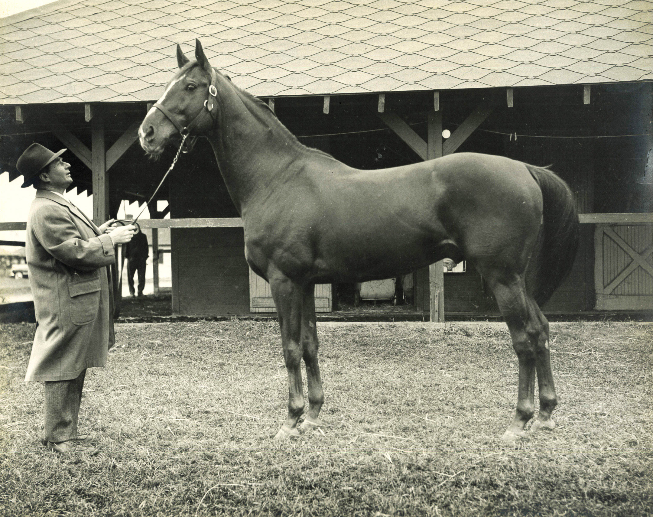 Stymie with trainer Hirsch Jacobs at Jamaica Racetrack in the late 1940s (Museum Collection)