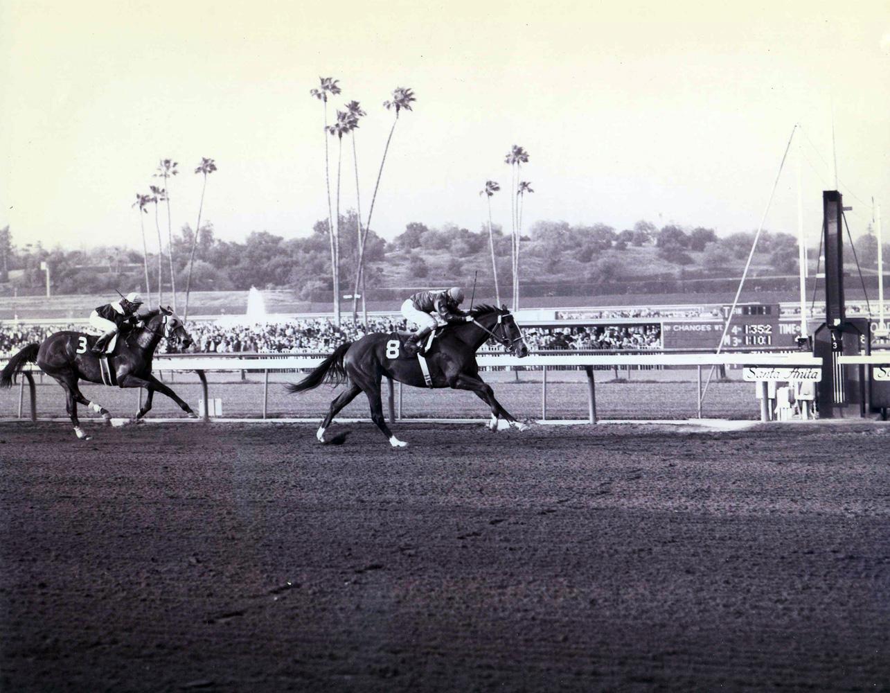 Susan's Girl (Laffit Pincay up) winning the 1973 Santa Margarita Invitational Handicap at Santa Anita Park (Santa Anita Photo/Museum Collection)
