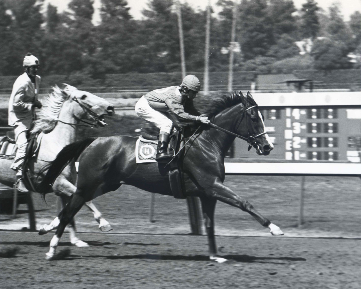Susan's Girl with Laffit Pincay up at Hollywood Park (Bill Mochon/Museum Collection)
