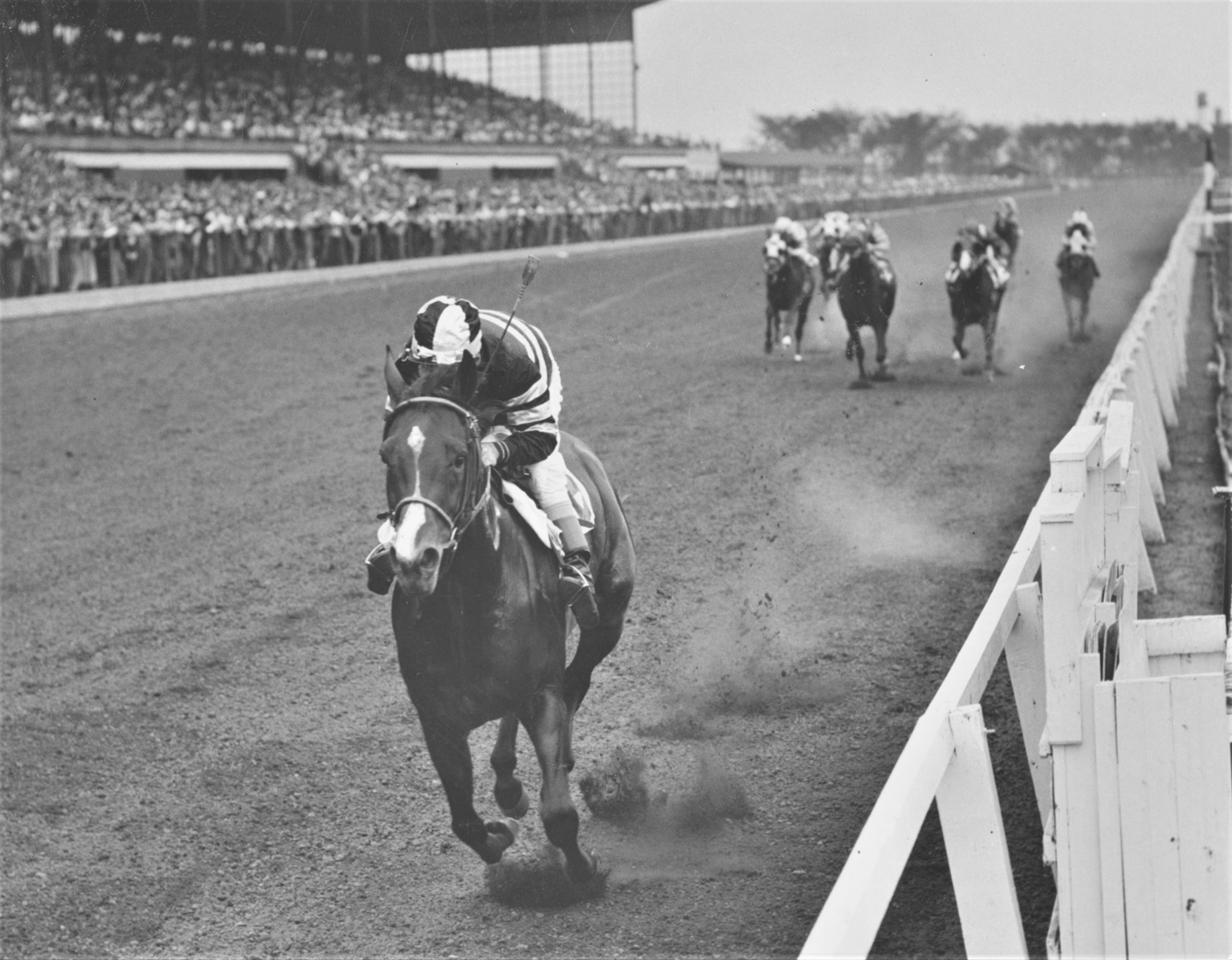 Swoon's Son winning the 1957 Midwest Handicap at Hawthorne (Keeneland Library Thoroughbred Times Collection)
