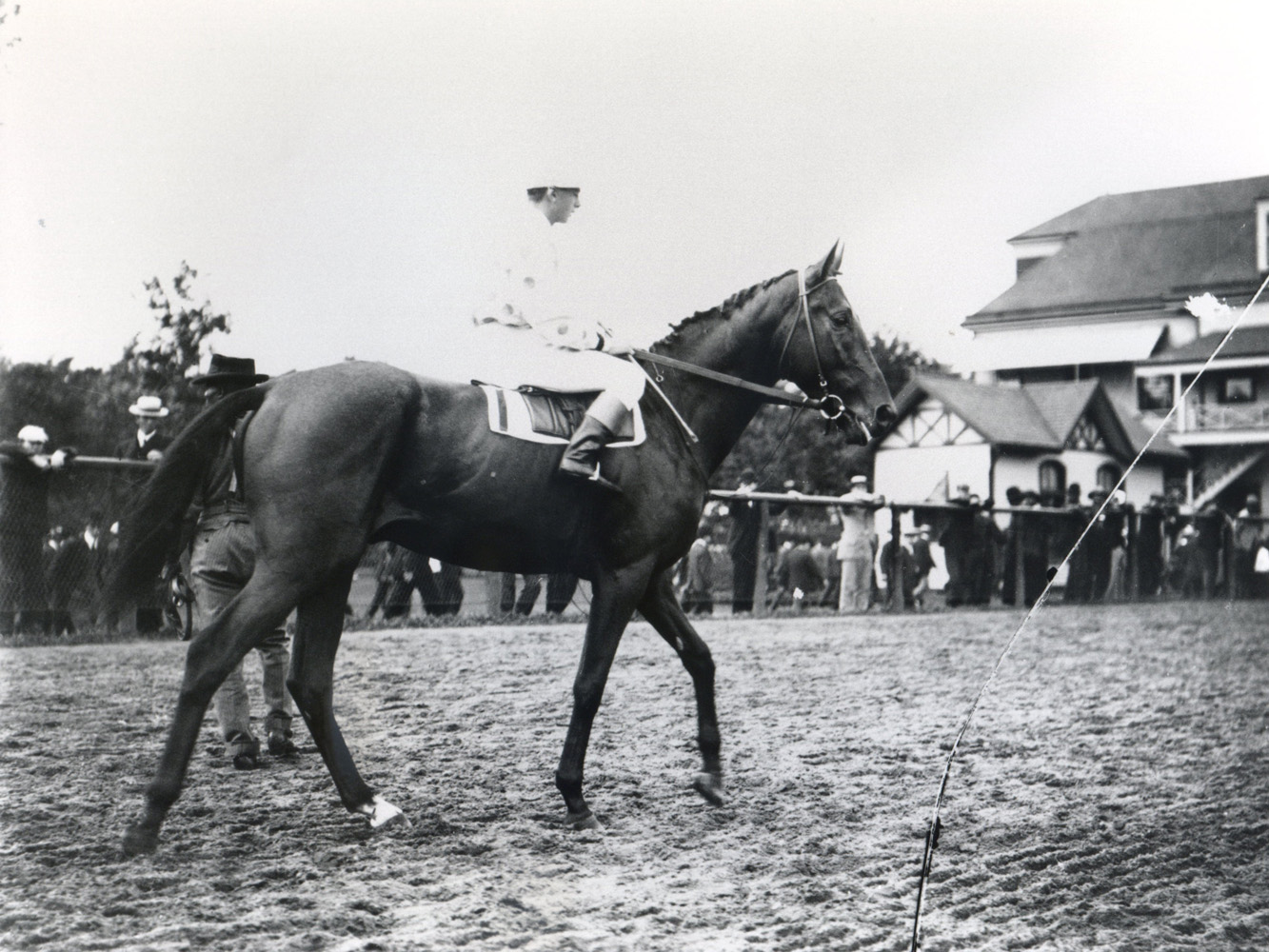 Sysonby (Keeneland Library Cook Collection/Museum Collection)
