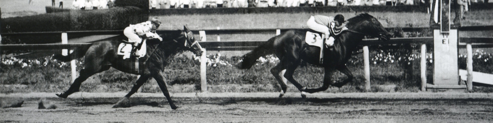 Tom Fool (Ted Atkinson up) winning the 1953 Brooklyn Handicap at Aqueduct (Keeneland Library Morgan Collection/Museum Collection)