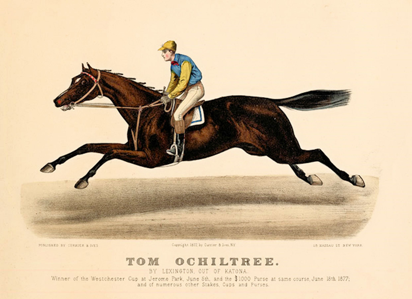 Currier & Ives print of Tom Ochiltree (Museum Collection)