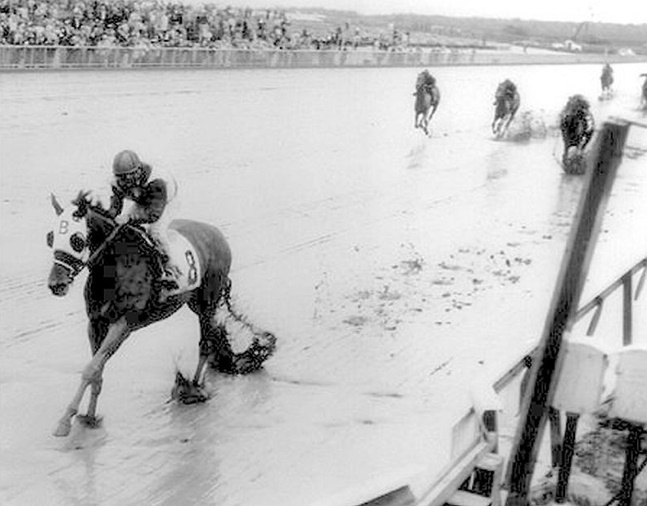 Tosmah (Sam Boulmetis up) winning the 1963 Mermaid Handicap at Atlantic City Race Course (Turfotos/Museum Collection)