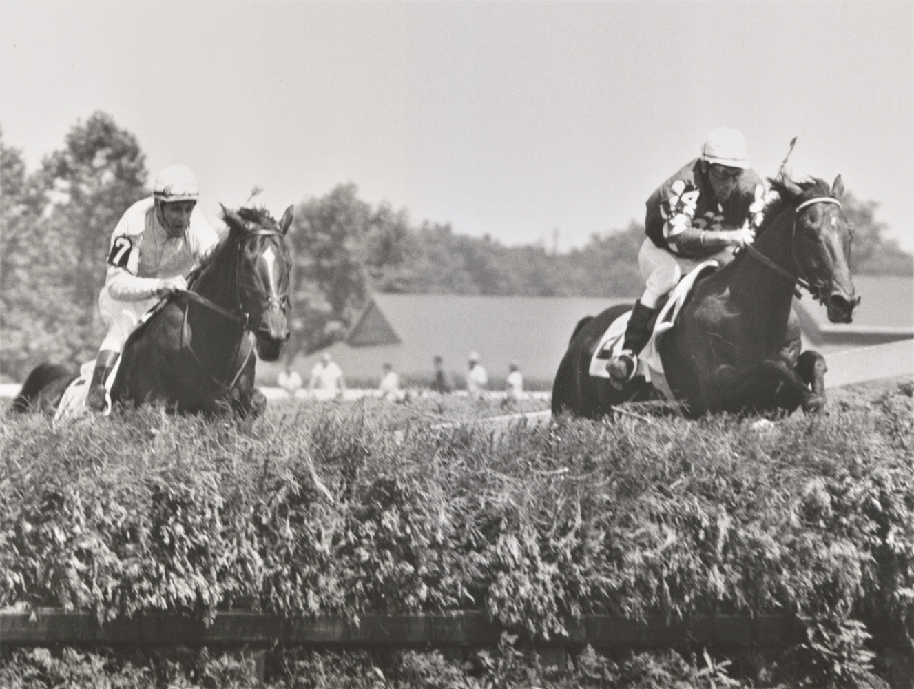 Tuscalee (on right) approaching a jump in the Indian River Steeplechase at Delaware Park, July 1966 (Keeneland Library Thoroughbred Times Collection)