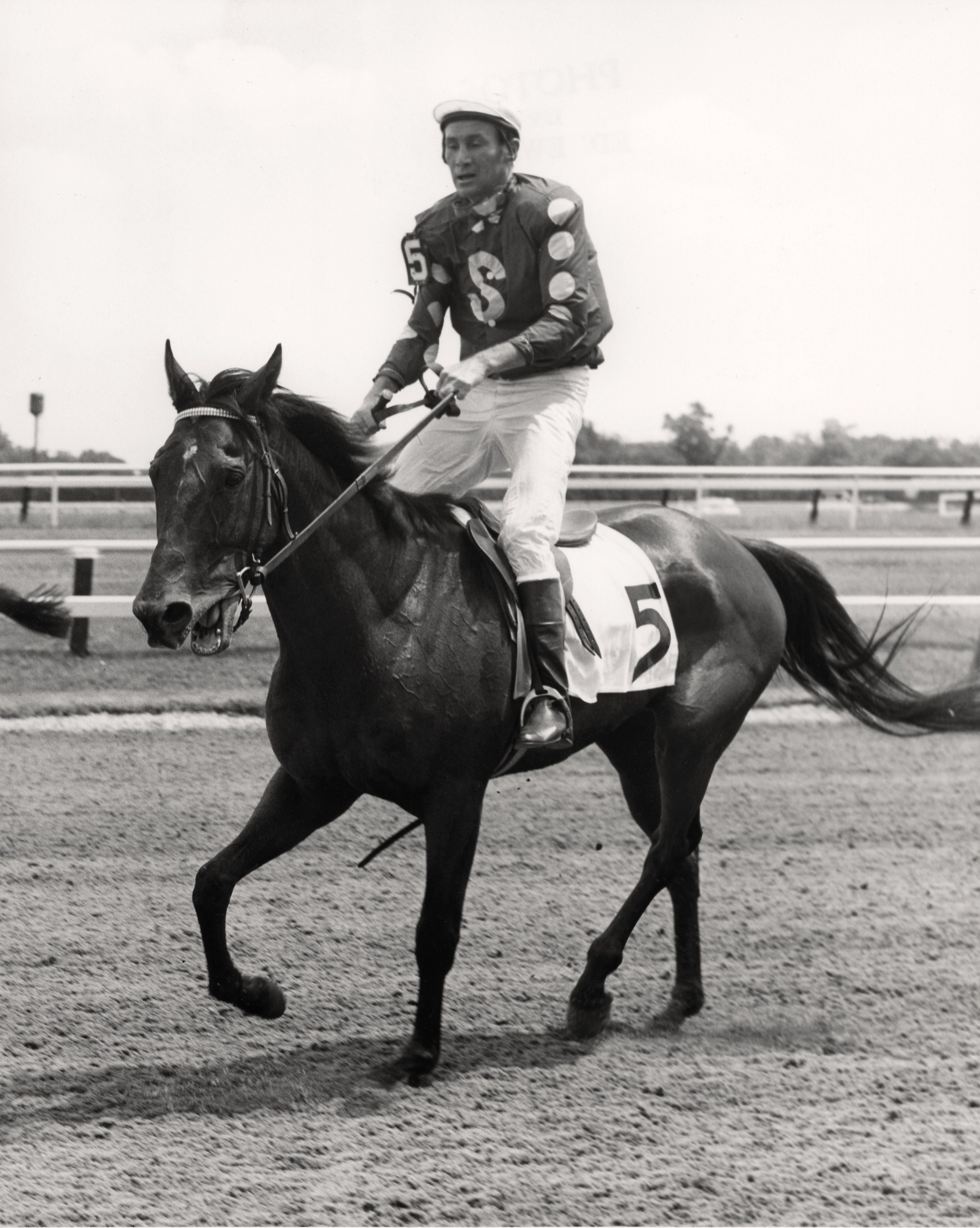 Tuscalee with Joe Aitcheson up after winning the 1967 Georgetown Steeplechase Handicap (Keeneland Library Thoroughbred Times Collection)