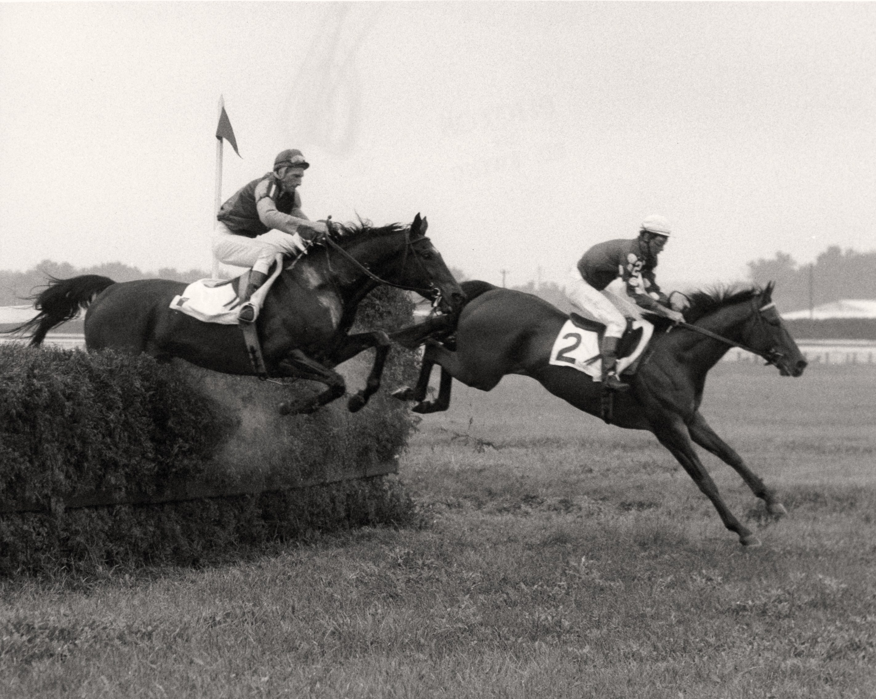 Tuscalee (#2) clearing a jump with Joe Aitcheson up (Keeneland Library Thoroughbred Times Collection)