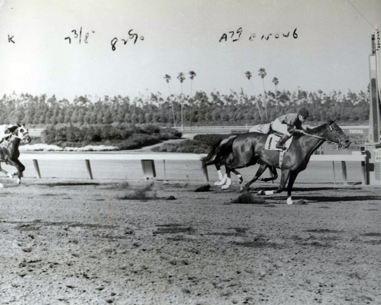 Two Lea (Henry Moreno up) winning the 1952 Hollywood Gold Cup at Hollywood Park (The BloodHorse/Museum Collection)