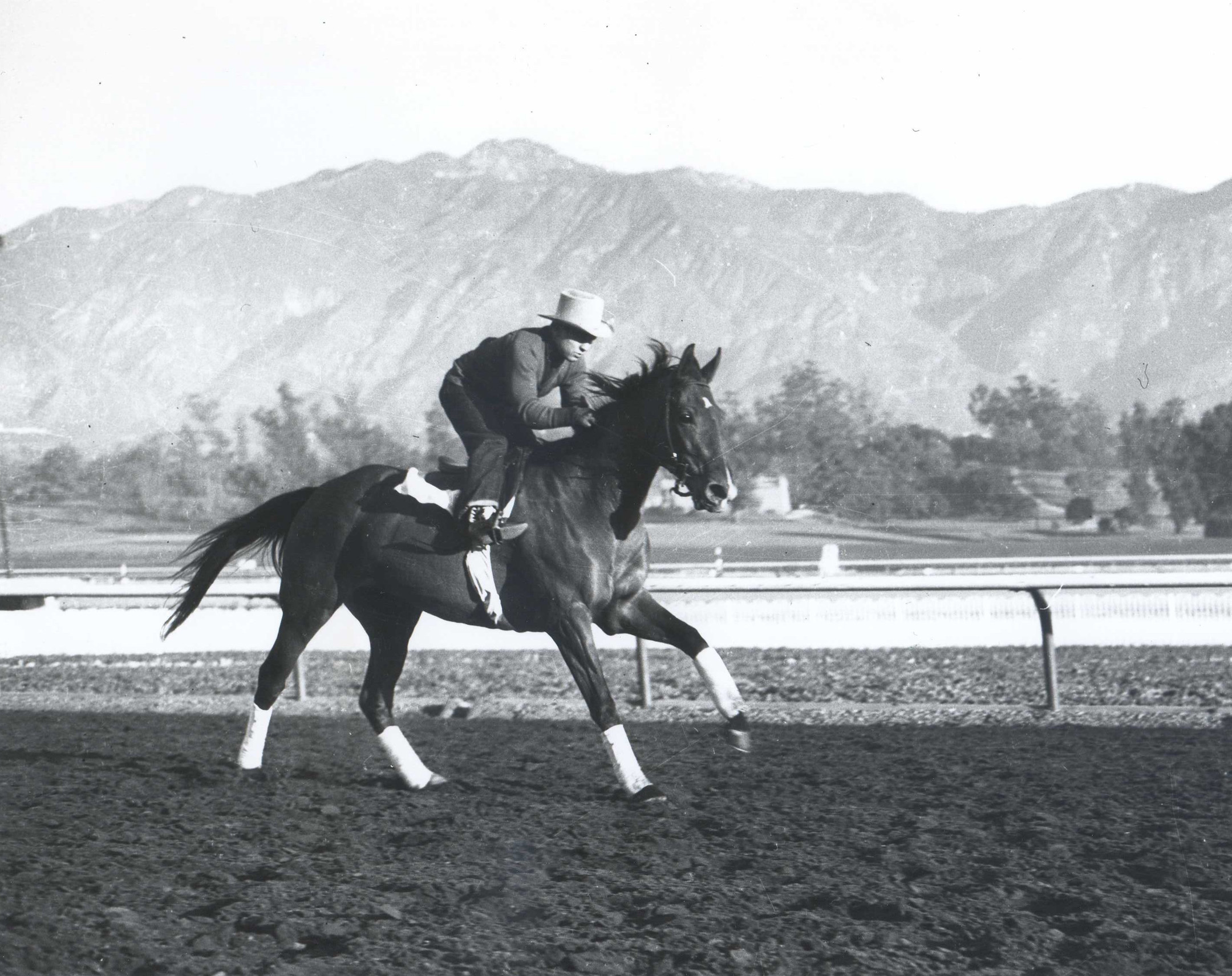 Two Lea during a workout at Santa Anita Park (Bill Mochon/Museum Collection)
