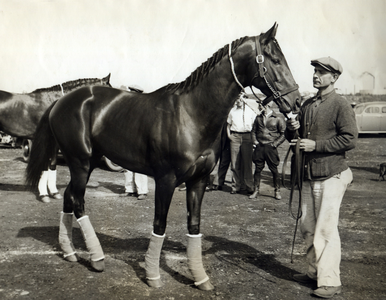 War Admiral (Museum Collection)