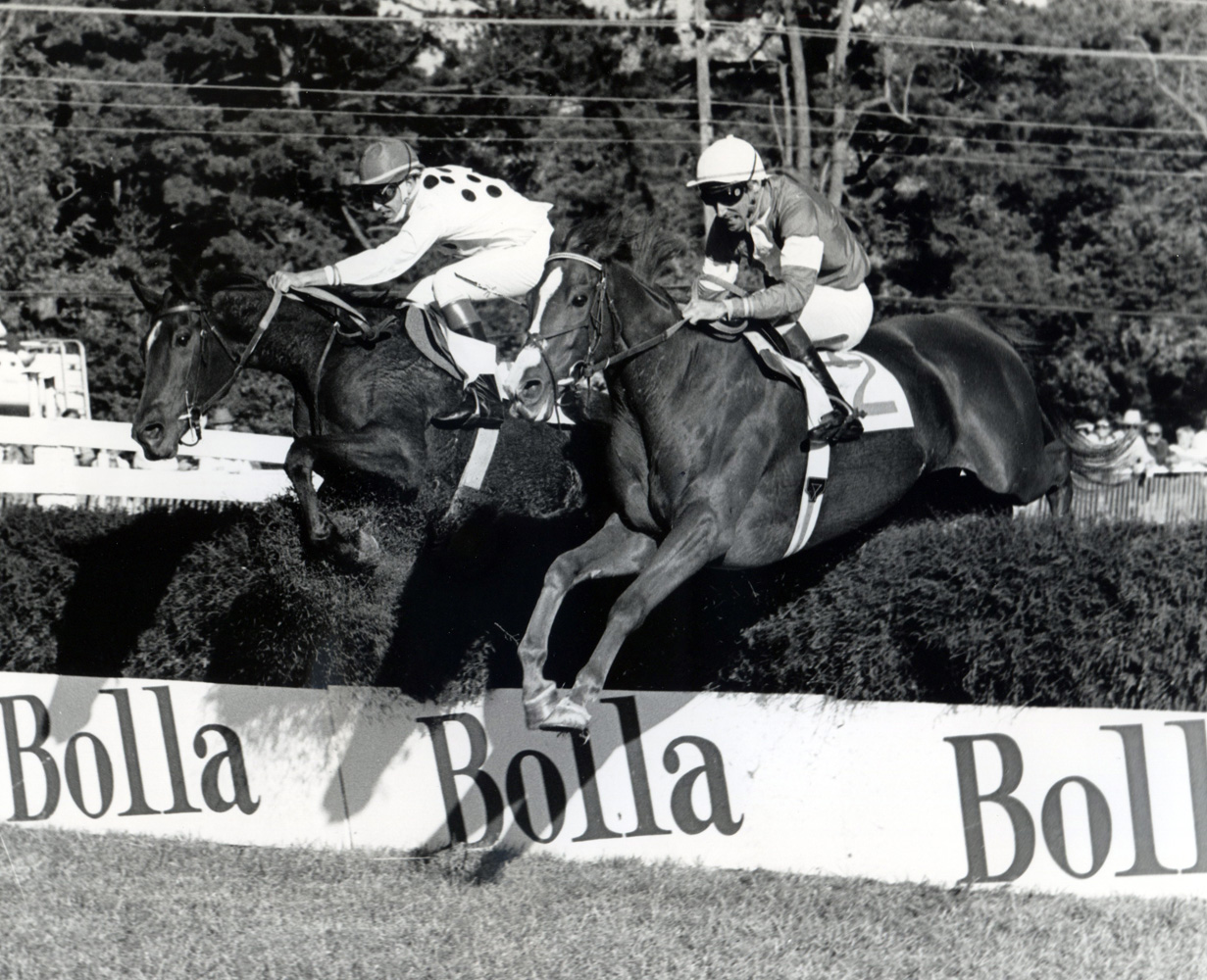 Zaccio (John Cushman up) on the right clearing a jump in the 1981 Grand National Handicap at Foxfield in Virginia (Douglas Lees/Museum Collection)