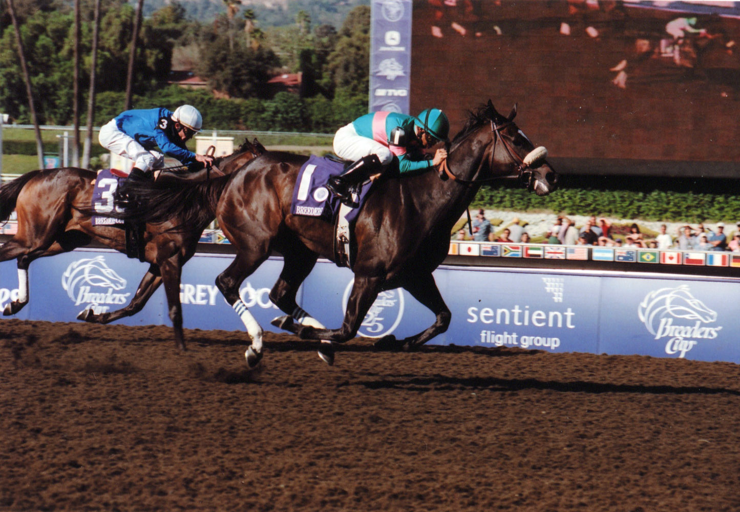Zenyatta (Mike Smith up) winning the 2008 Breeders' Cup Ladies' Classic at Santa Anita (Bill Mochon/Museum Collection)