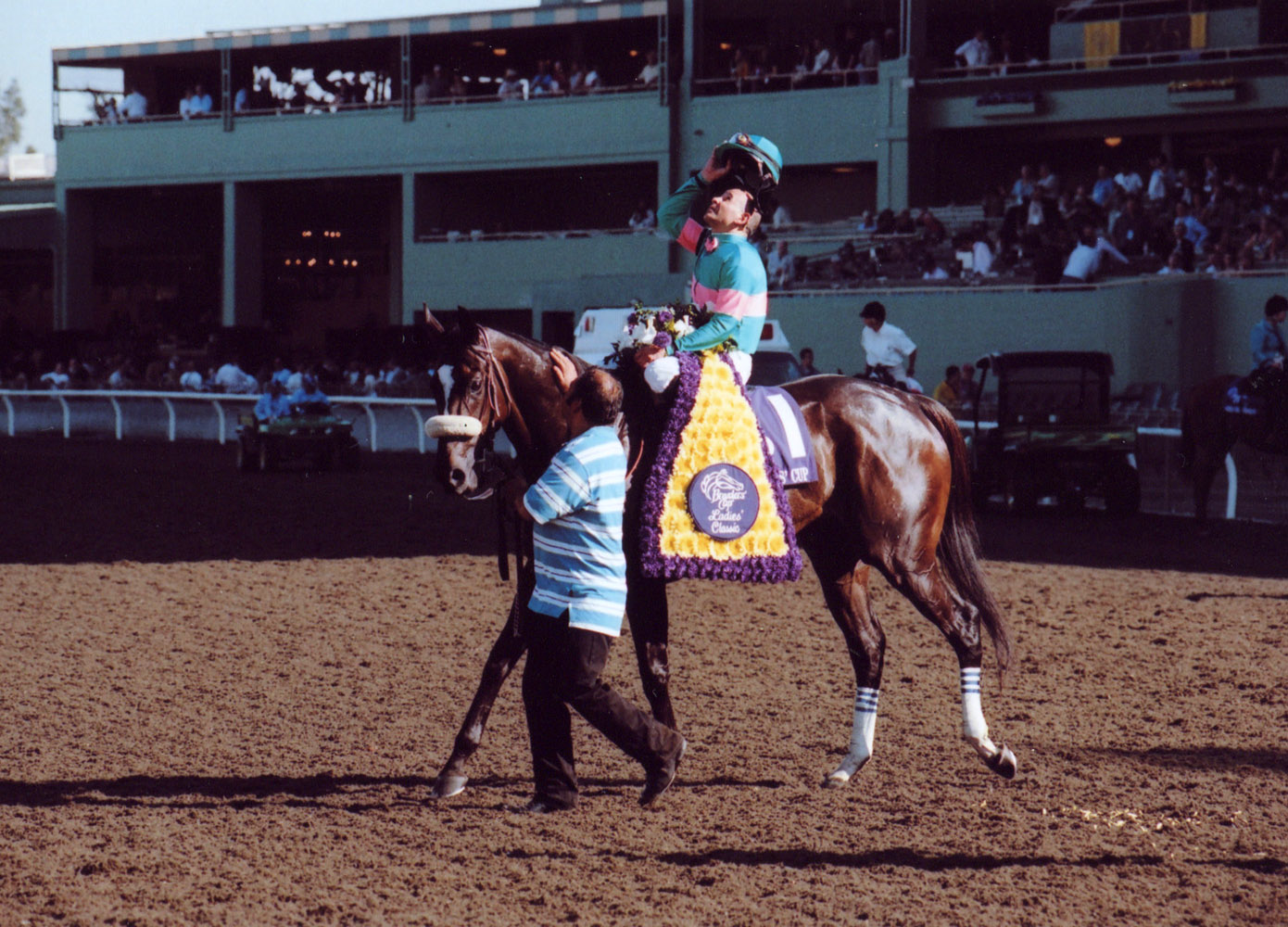 Zenyatta (Mike Smith up) celebrating their 2008 Breeders' Cup Ladies' Classic win (Bill Mochon/Museum Collection)