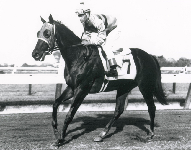 Affectionately (Ismael Valenzuela up) after winning the 1962 Sorority Stakes at Monmouth Park (The BloodHorse/Museum Collection)