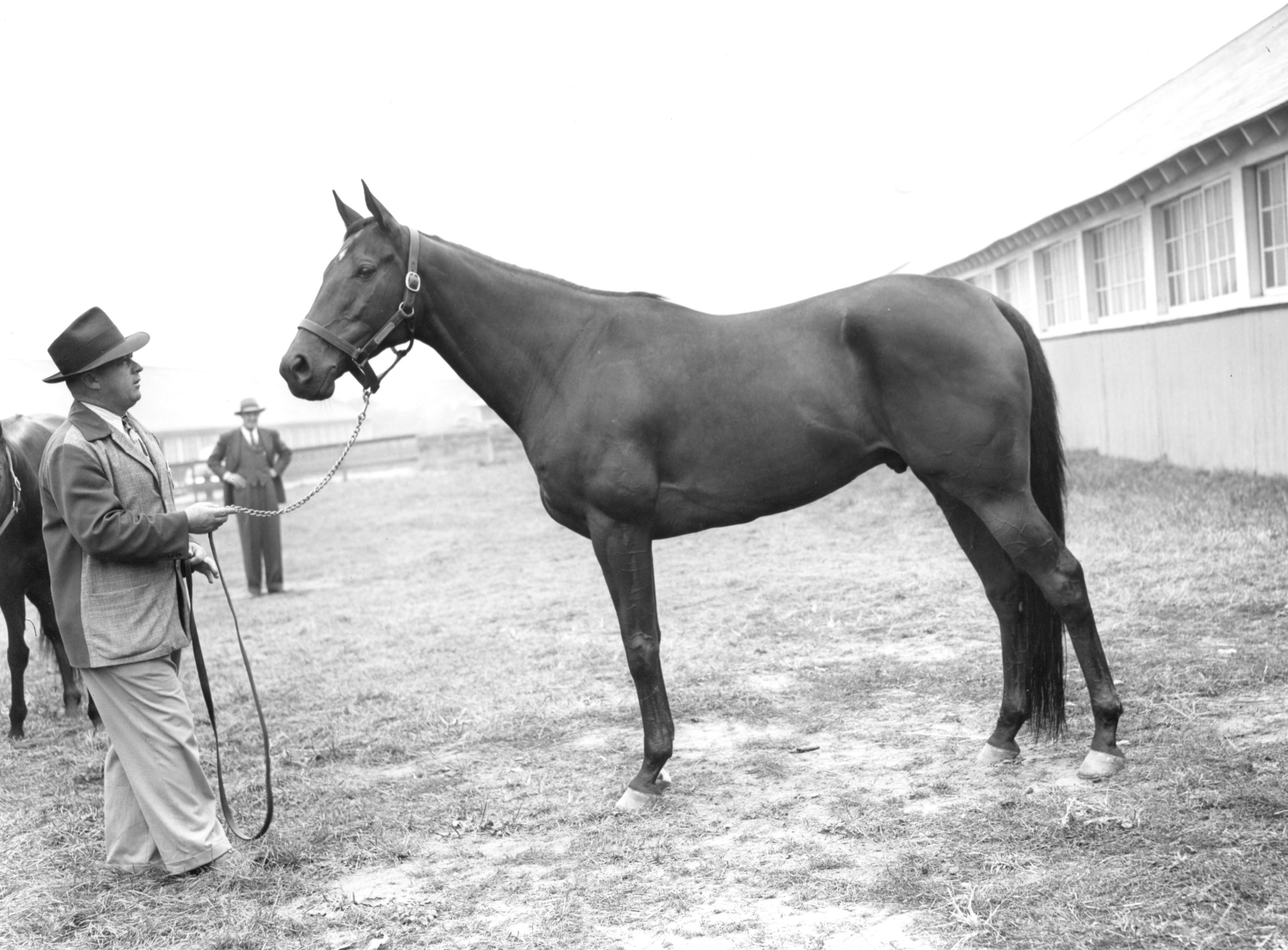"""Armed with Hall of Fame trainer H. A. """"Jimmy""""Jones at Belmont Park, 1947 (Keeneland Library Morgan Collection/Museum Collection)"""