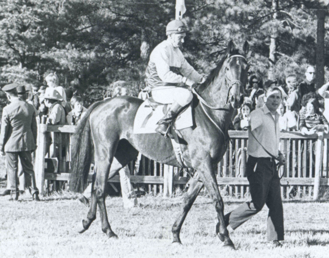 Café Prince at the 1975 Colonial Cup (The BloodHorse/Museum Collection)