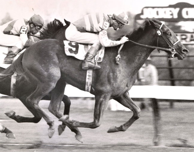 Carry Back (John Sellers up) winning the 1961 Trenton Handicap at Garden State Park (Jim Raftery Turfotos)