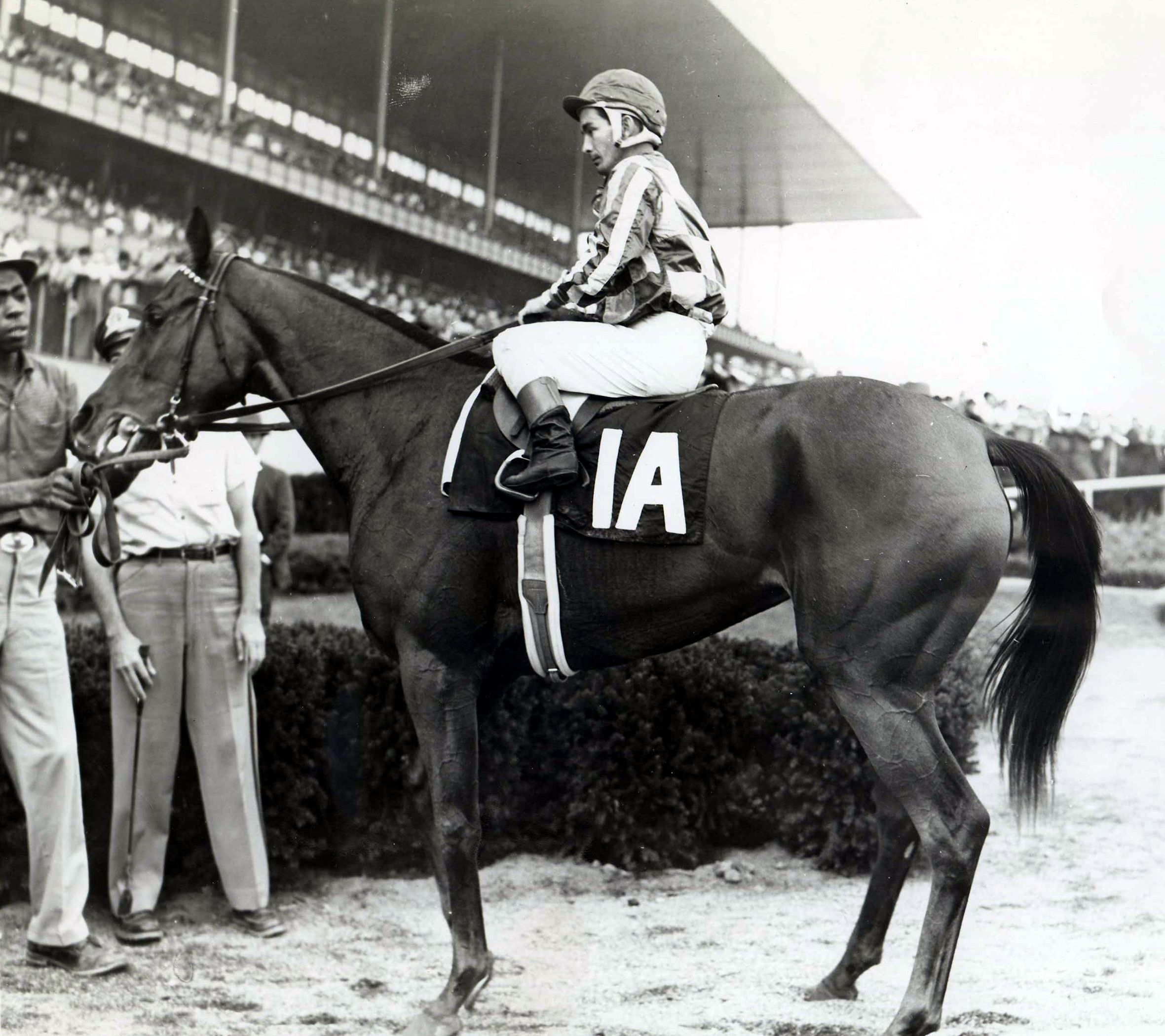 Cicada (Bill Shoemaker up) in the winner's circle for the 1961 Frizette at Aqueduct (Museum Collection)