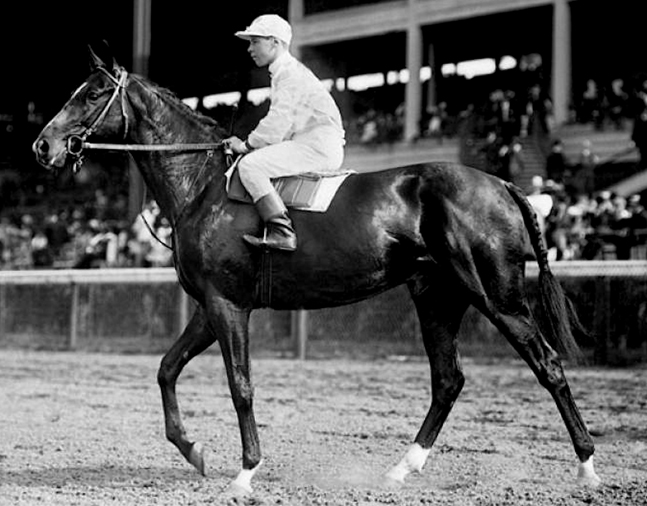 Colin with Joe Notter up at Belmont Park (Keeneland Library Cook Collection/Museum Collection)