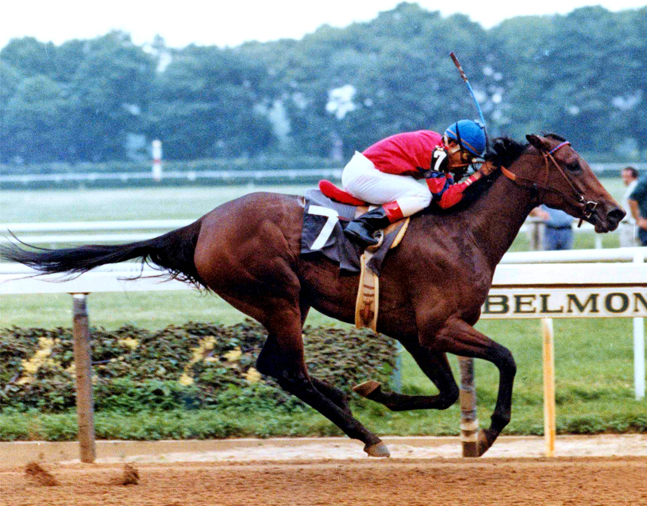 Davona Dale racing at Belmont Park (NYRA/Museum Collection)