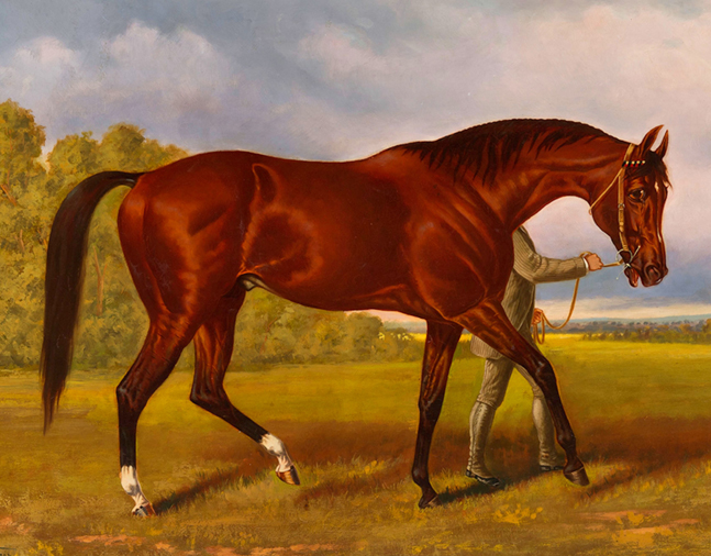 Painting of Duke of Magenta by Henry Stull