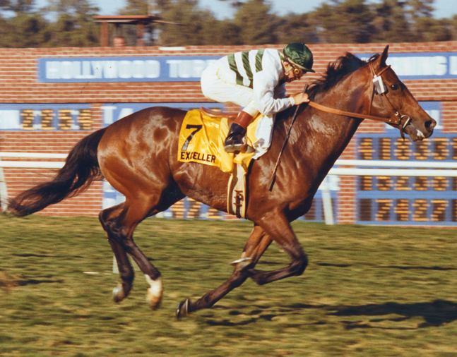 Exceller (Bill Shoemaker up) winning the 1978 Hollywood Invitational Handicap at Hollywood Park (Hollywood Park Photo/Museum Collection)