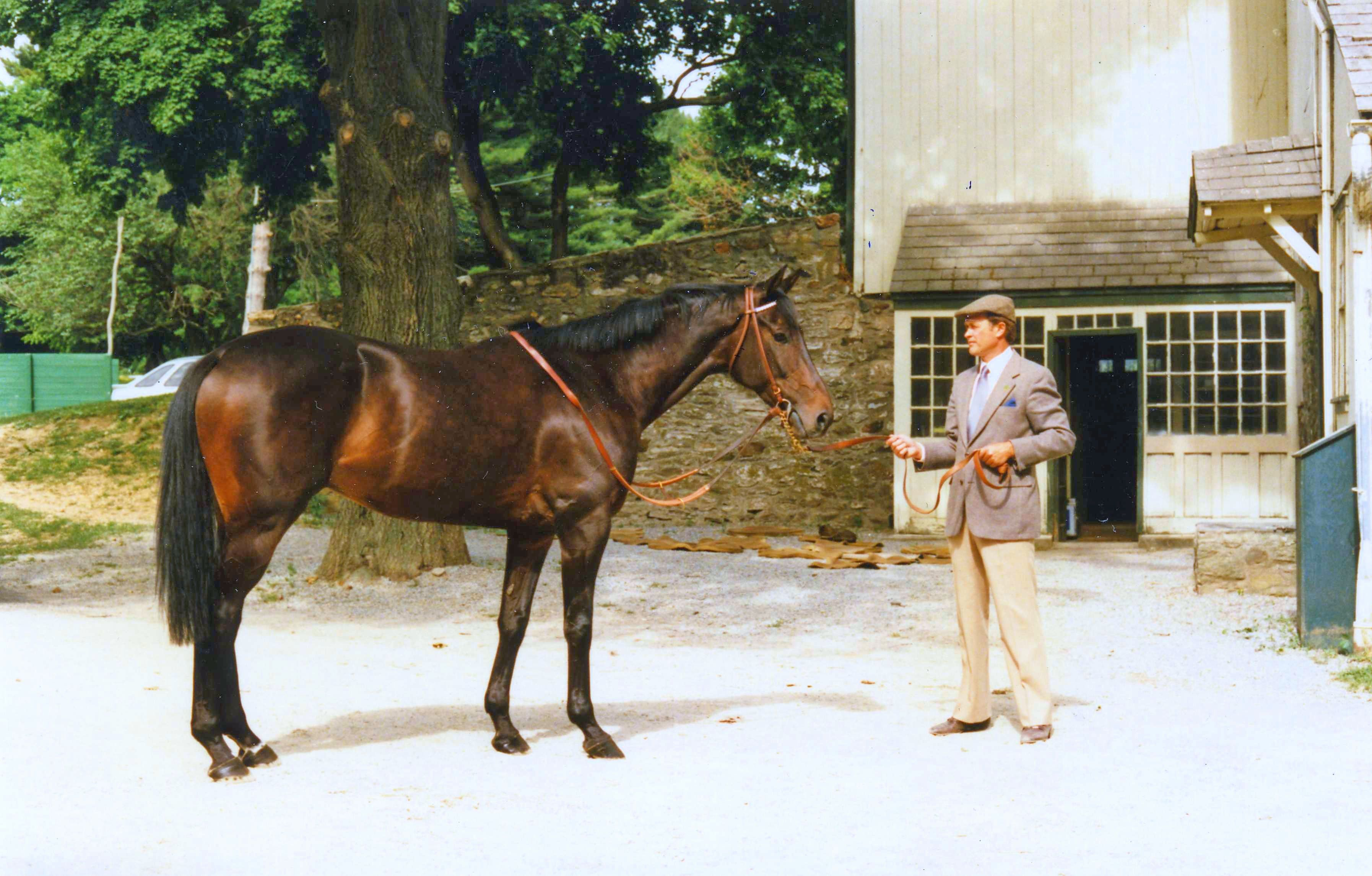 Flatterer with trainer Jonathan Sheppard (Catherine French/Museum Collection)