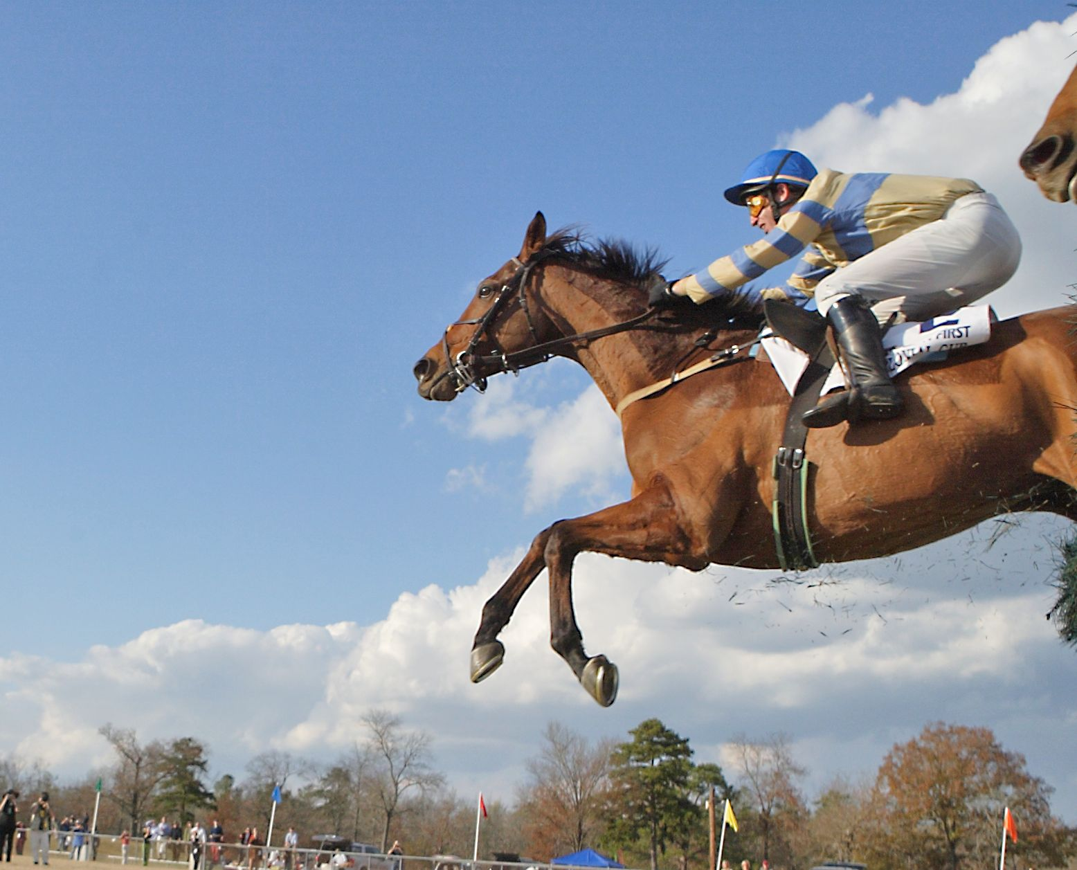 McDynamo flying high over a jump in the 2006 Colonial Cup (Tod Marks)