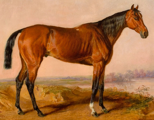 Painting of Kentucky by Edward Troye