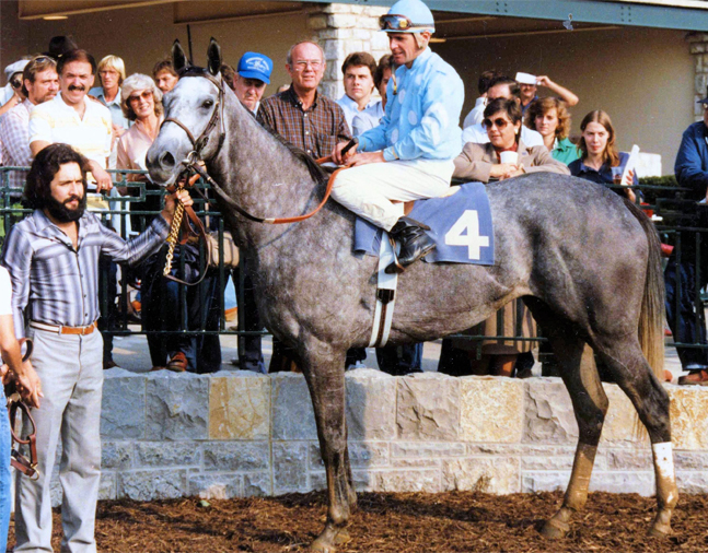 Princess Rooney (Eddie Delahoussaye up) in the winner's circle at Keeneland in October 1984 (Barbara D. Livingston/Museum Collection)