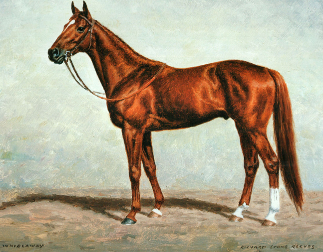 Painting of Whirlaway by Richard Stone Reeves
